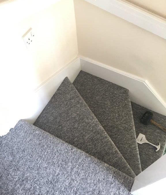 Rental letting carpet and vinyl